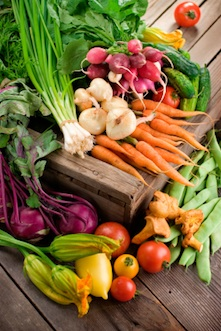 Farmer's Market - Organic Vegetables