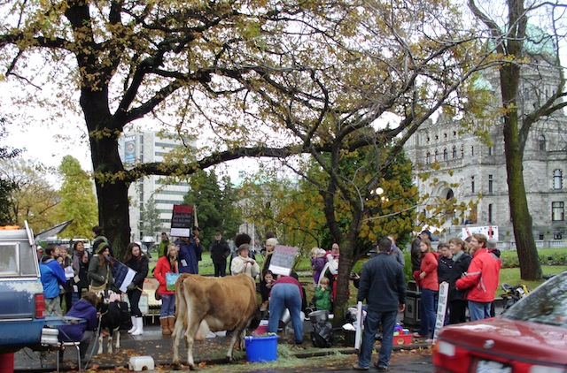 raw-milk-rally