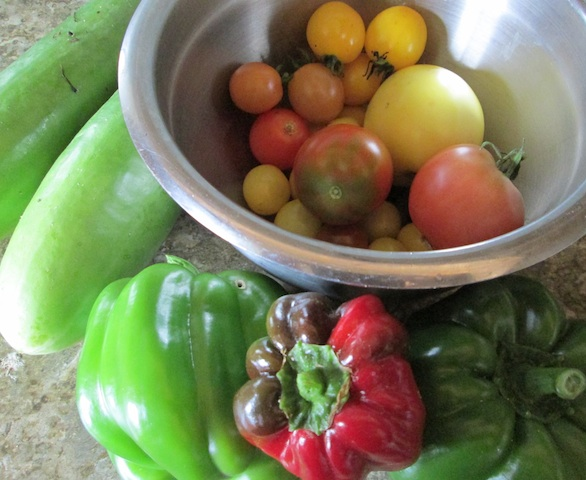 tomatoes cumcumber peppers Garden Harvest: Photo Essay