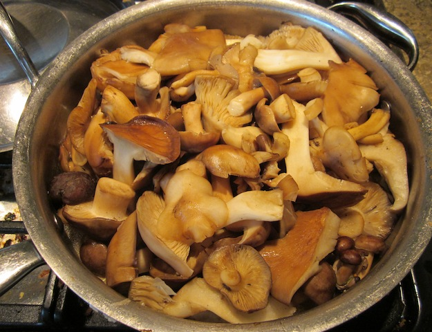 wild mushroom 2 Seasonal Foods: Frozen Wild Mushrooms