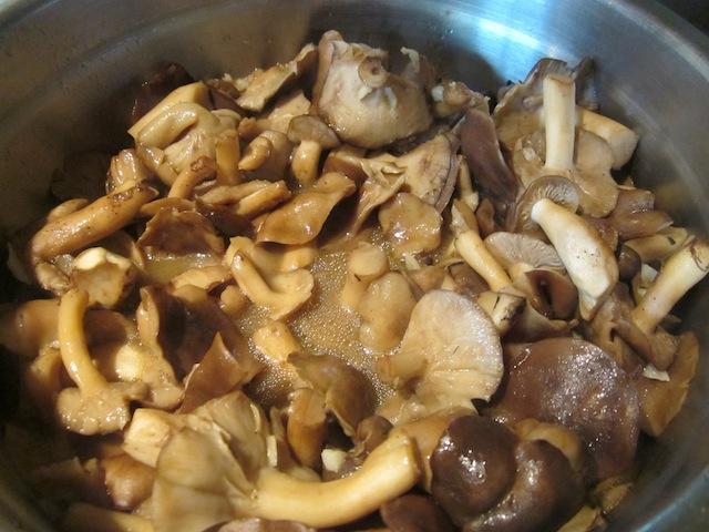 wild mushroom 3 Seasonal Foods: Frozen Wild Mushrooms