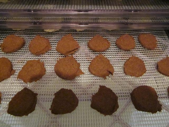 beanie-ginger-snaps